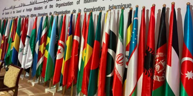 Analyzing the role of OIC